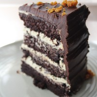 Chocolate Honeycomb Celebration Cake