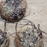 Dark Chocolate and Salted Tahini Cookies